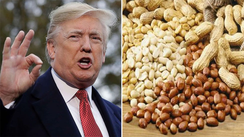 Trump ordena cobro de aranceles en cacahuates importados de México