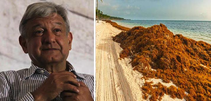 """Gobierno propone política de """"sargazos, no balazos"""" para atraer más turismo"""
