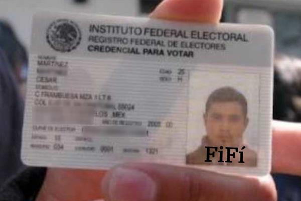 INE pondrá en credencial para votar si la persona es chaira o fifí