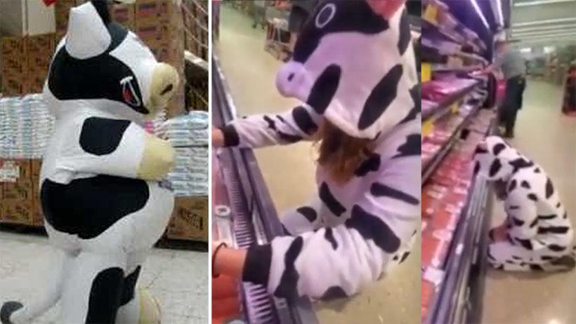 Drama vegano nivel: se disfraza de vaca para ir a llorar al área de carnes
