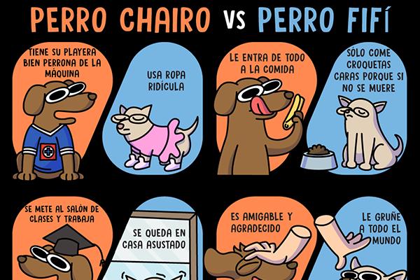 Perro chairo vs Perro fifí