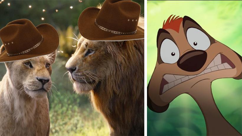 Zoólogos confirman que Simba y Nala son originarios de Monterrey
