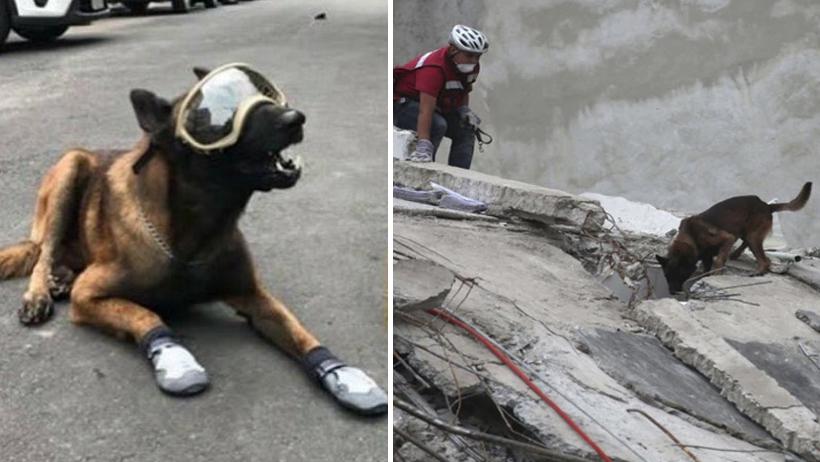 Él es Chichí, el rescatista que nos ayudó en el sismo y ahora nos necesita