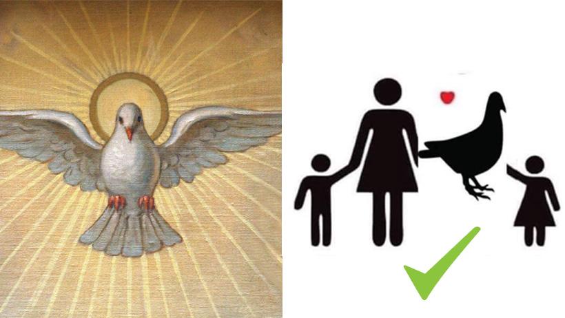 El Espíritu Santo confirma: el diseño original de familia es paloma, madre e hijo