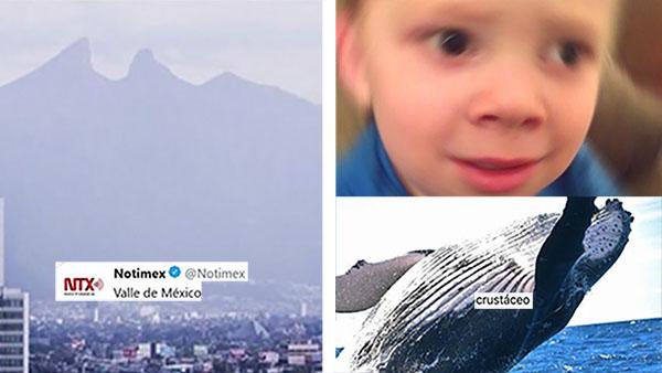 Notimex ya nos hace competencia: Dijeron que el Cerro de la Silla está en Edomex