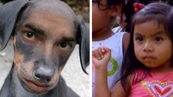 Tu ex también podrá celebrar hoy el Día del Perro, confirma la Secretaría del Medio Ambiente