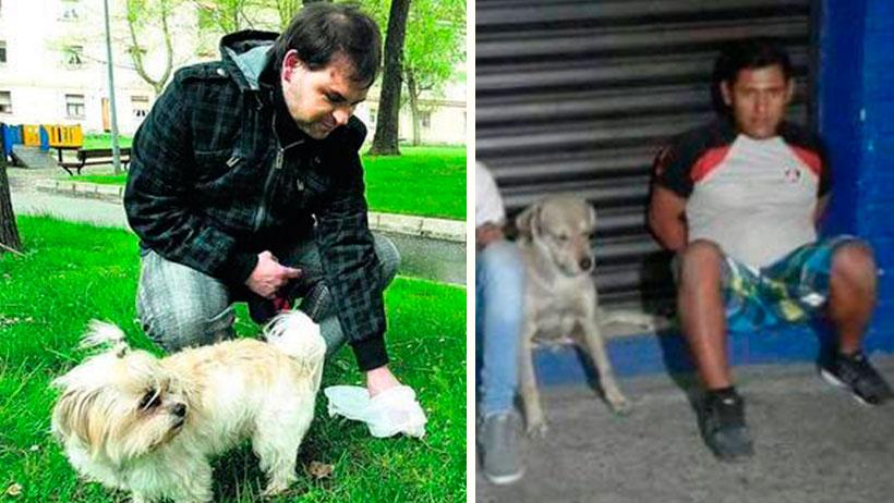Personas que no recojan las heces de sus perros serán privadas de su libertad