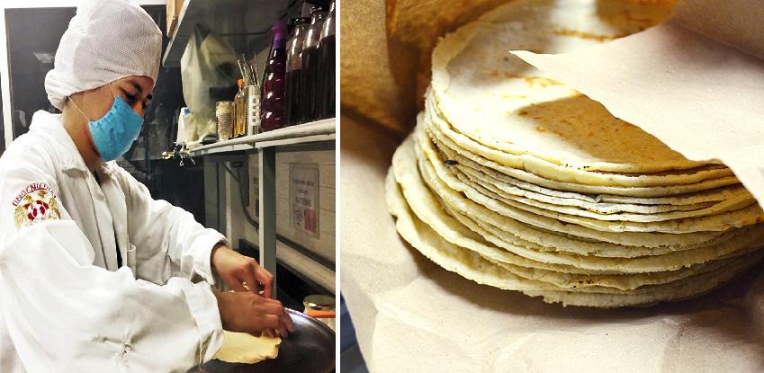 Científicos confirman que agarrar la tortilla de hasta arriba produce cáncer