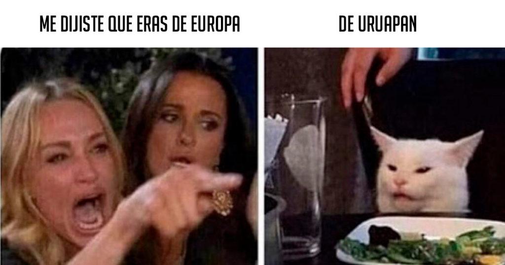 """Colección definitiva del meme del gato al que le gritan """"me dijiste…"""""""