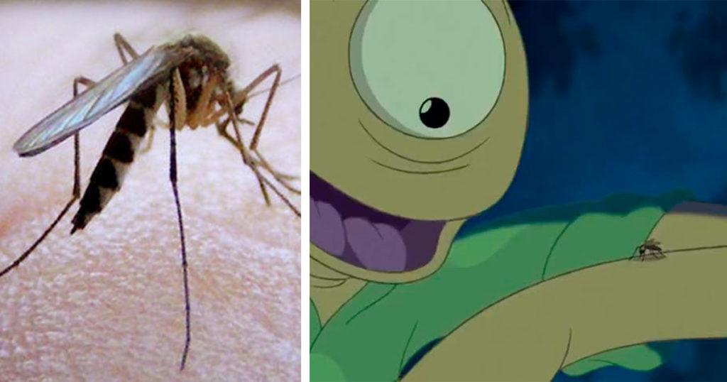 Ahora los amantes de los animales dicen que te tienes que dejar picar por los mosquitos