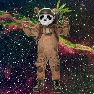 Panda se cansó de este sistema matraca y decidió irse a viajar por el espacio, a vivir el presente al cien. Tanto viaje lo ha dejado un poco loco, aunque desde su punto de vista los locos son los otros.
