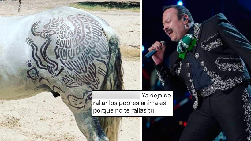 Pepe Aguilar les hace un cambio de look a sus caballos y los animalistas lo atacan