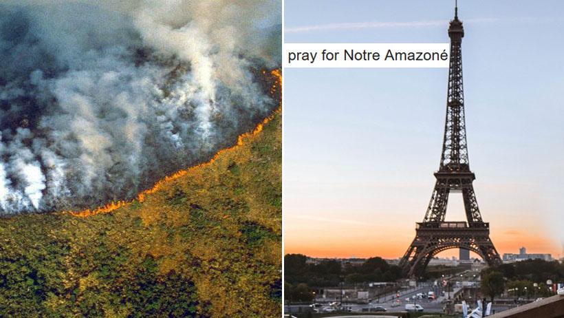 ONU afirma que Amazonas está en París y millones de internautas lamentan el desastre