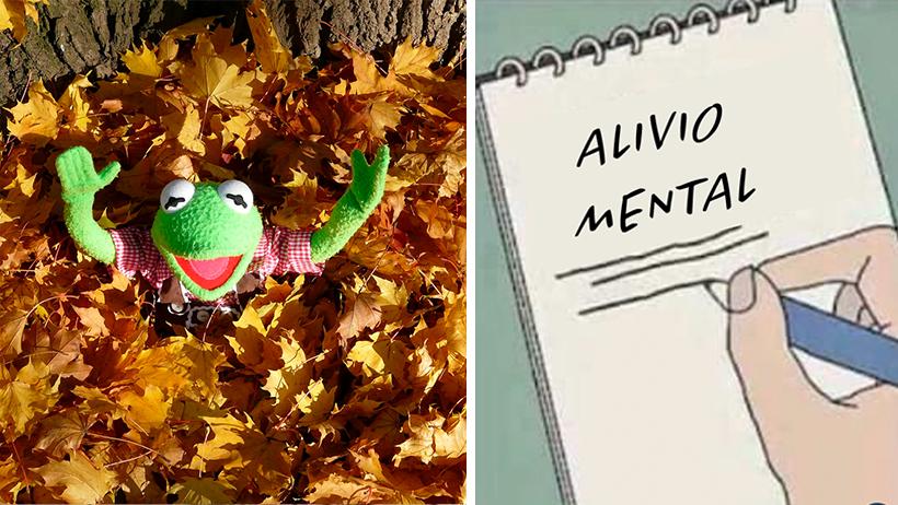 Declaran el pisar hojas secas la medida antidepresiva más efectiva durante el Otoño