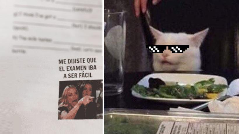 ¡Súbanle el sueldo a esta maestra que aplicó el meme del gatito y trolleó a sus alumnos!
