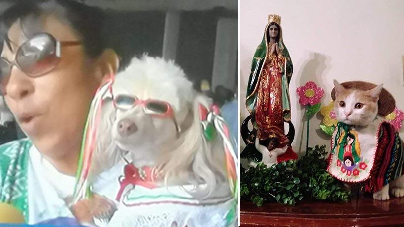 México es un país bastante extraño