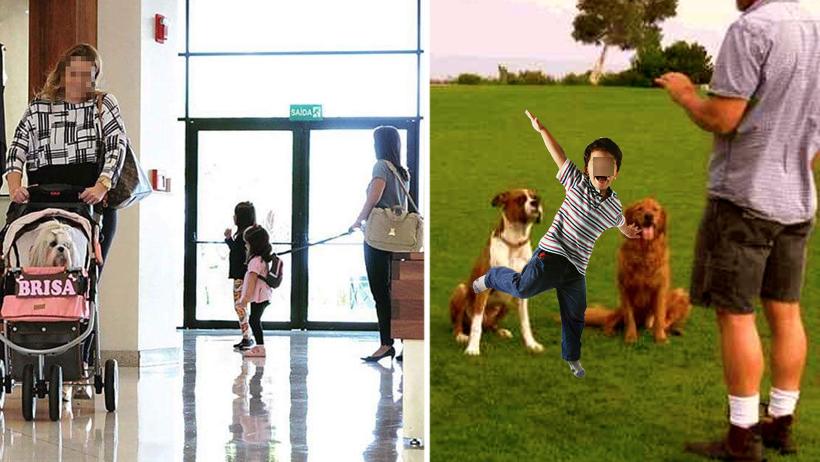 Niños que lleven correa también deberán recibir adiestramiento canino