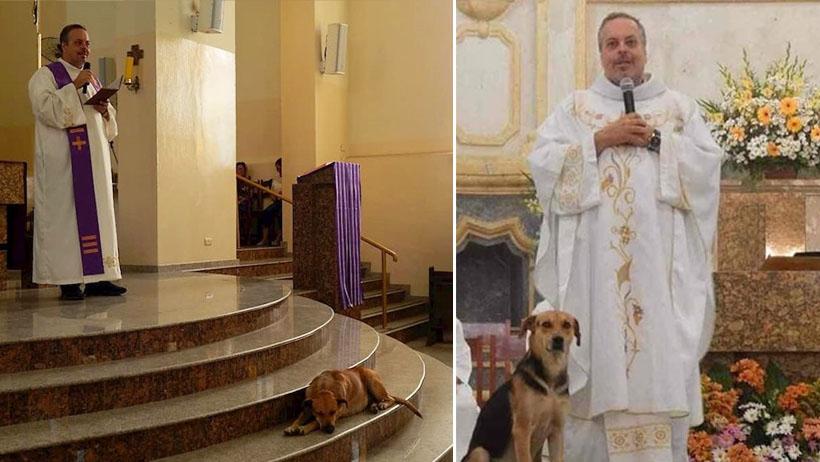 Ya se ganó el cielo este sacerdote: invita a perritos a misa para encontrarles hogar
