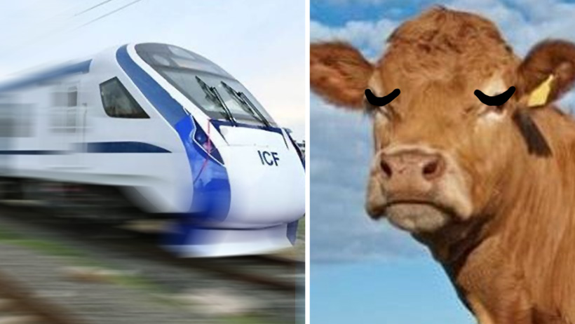¿Qué tan pueblo está tu pueblo? Suspenden estreno de tren por chocar con una vaca