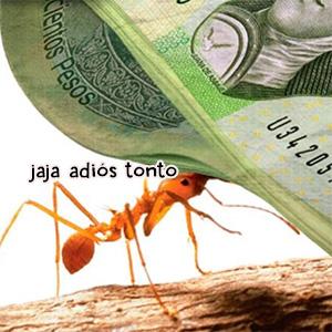 ¿Qué tanto gasto hormiga haces?