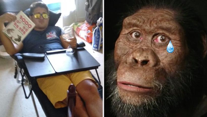 Australopithecus arrepentido de aprender a caminar para que tú te la pases echado