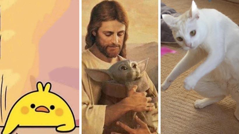 Los peores memes de 2019 y los mejores