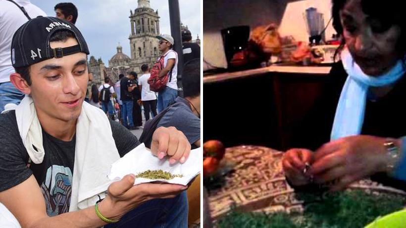 Marihuanos limpian romeritos