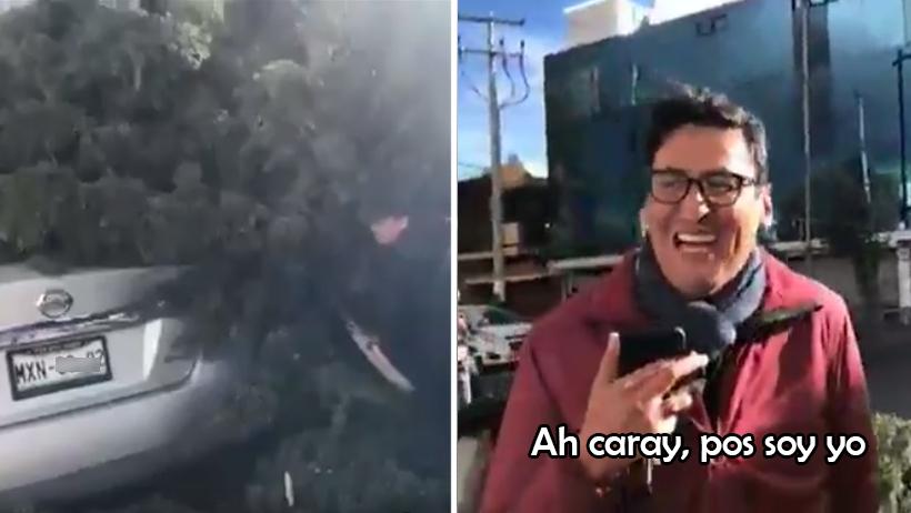Recibiendo el 2020 nivel: reporta árbol caído sobre auto y resulta ser el suyo