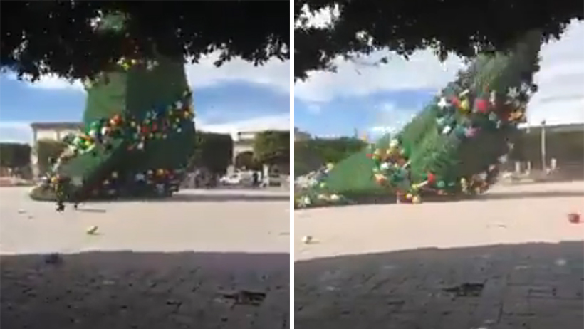 Cae árbol de Navidad em Hidalgo.