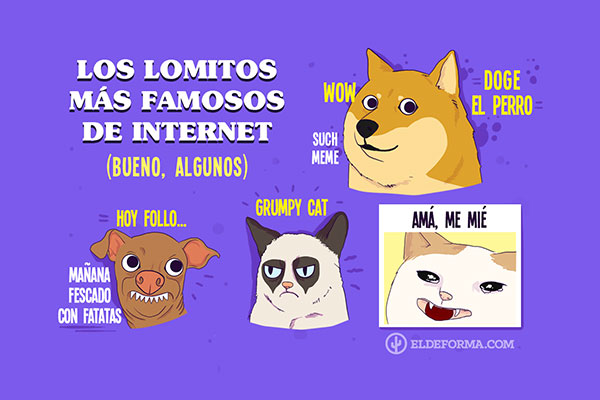 Los lomitos más famosos de Internet