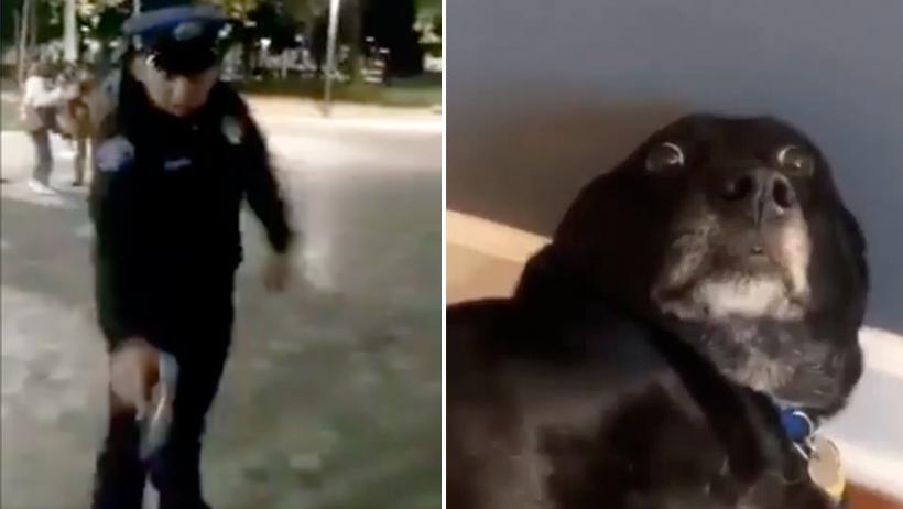 Cover Policía Perro Alameda