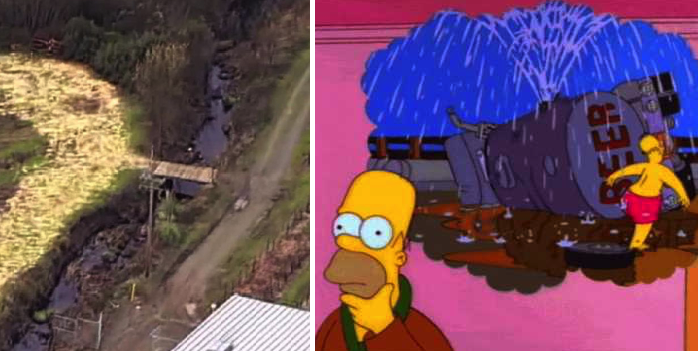 Los Simpson lo predijeron: Fuga de vino llena un río por completo