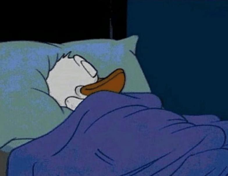 donald sleeping meme //nota año nuevo 2021