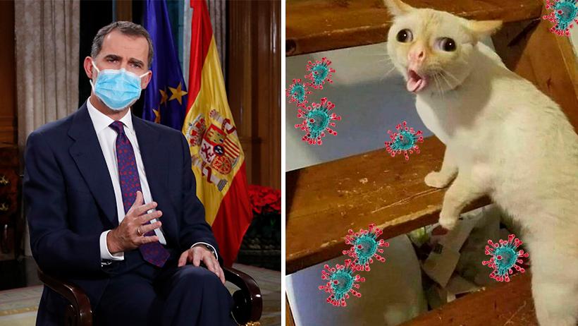 Cover Coronavirus España Flema Vital