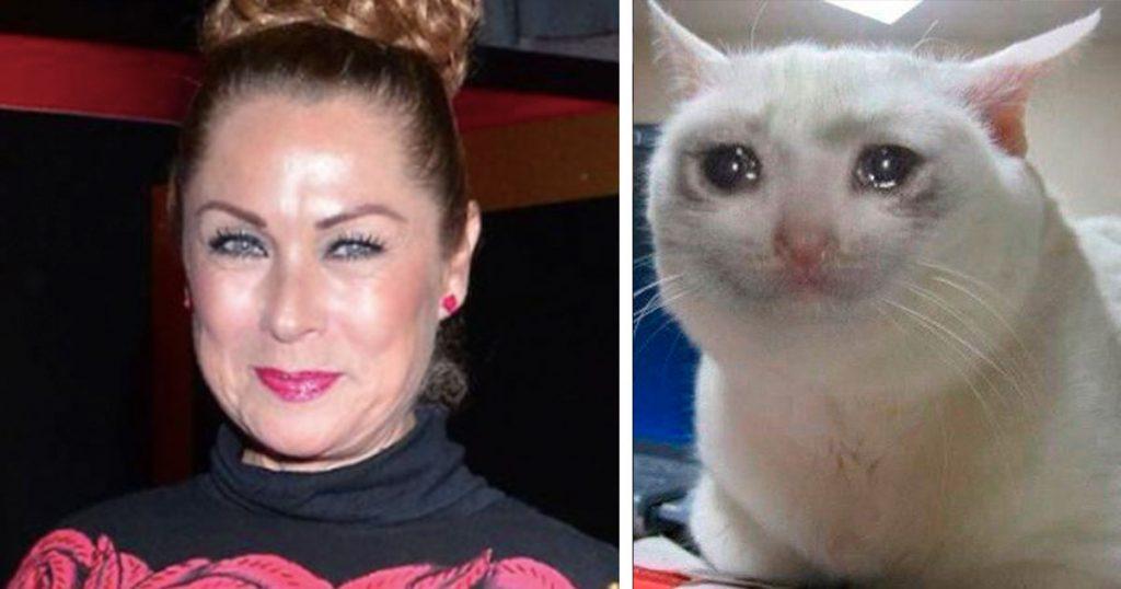 Cuando dices en plena entrevista que atropellas gatos porque no te gustan