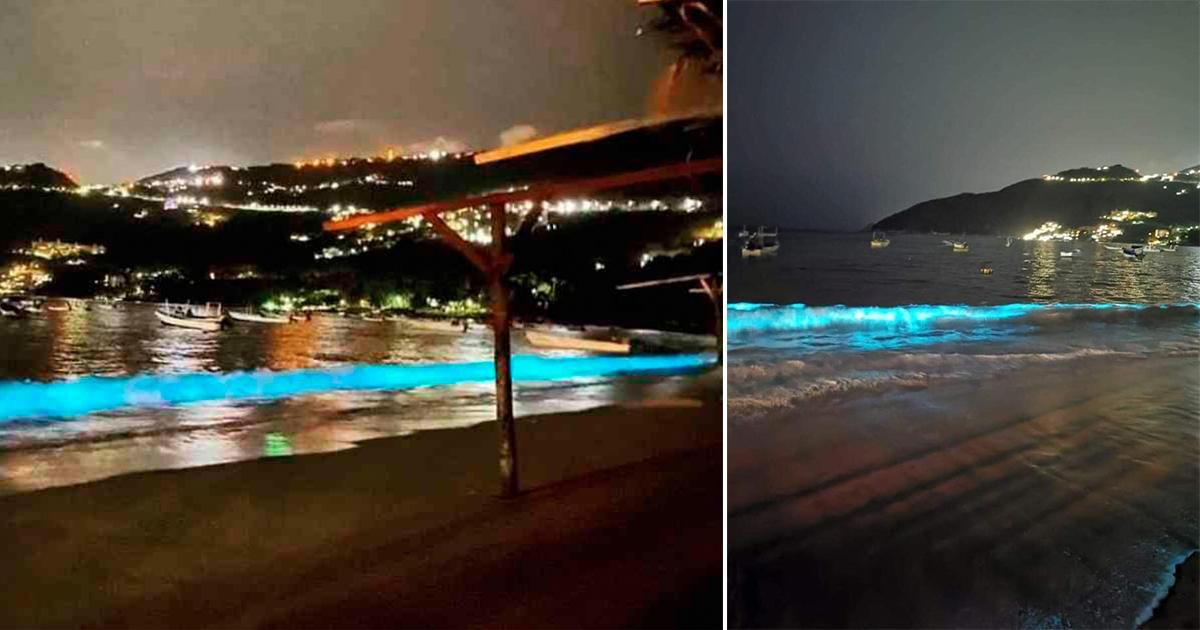 Playa de Acapulco brilla en la oscuridad