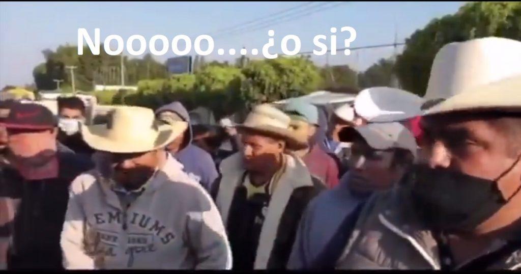 """""""¿Somos sus tontos? ¡Sí!"""": la historia del video de los manifestantes furiosos en Michoacán"""
