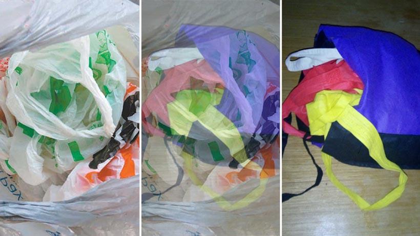 Descubren que la bolsa de bolsas evolucionó a bolsa de tela rellena de bolsas de tela