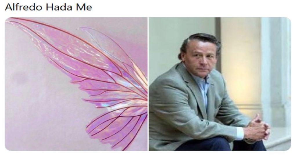 Alfredo Hada Me y los mejores memes de hadas que hechizaron al Internet