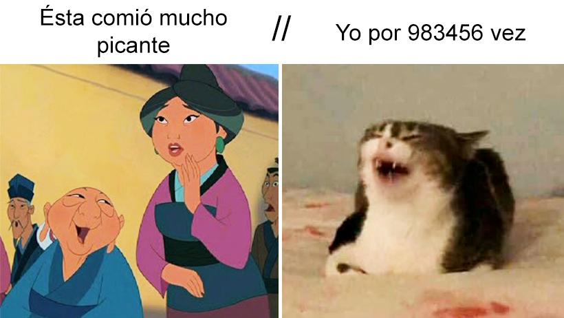 Mulan abuela gato meme