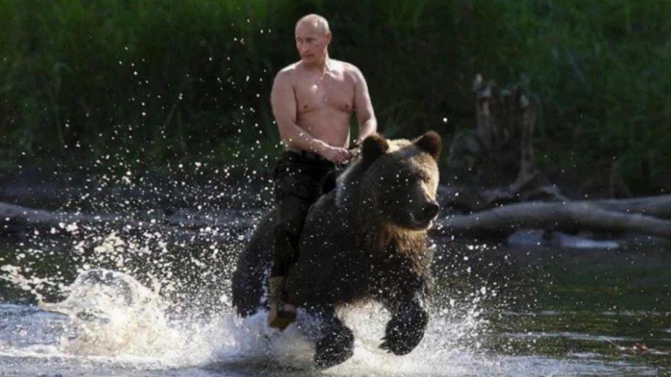 Putin Bear meme