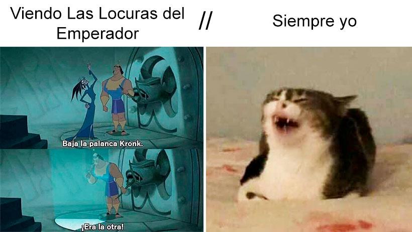 Viendo las locuras del emperador gato meme