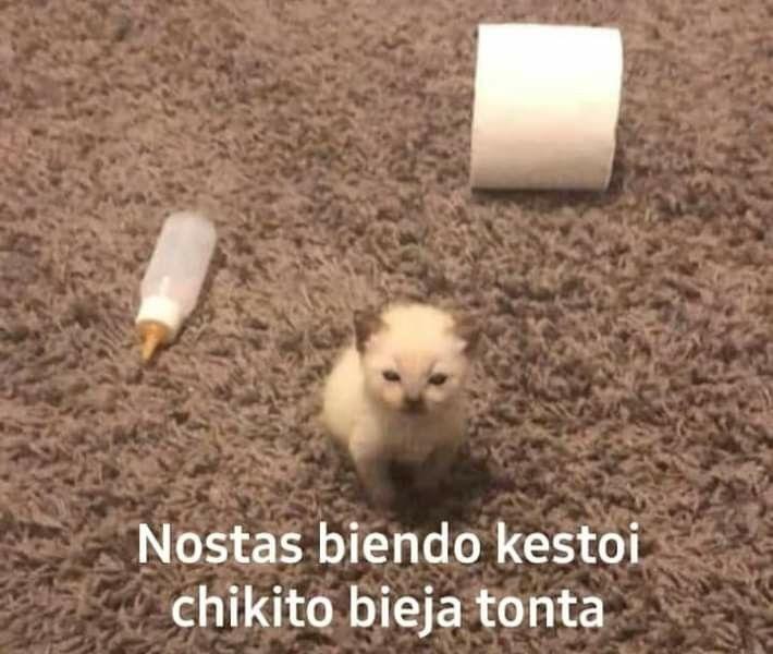 tio chikito meme