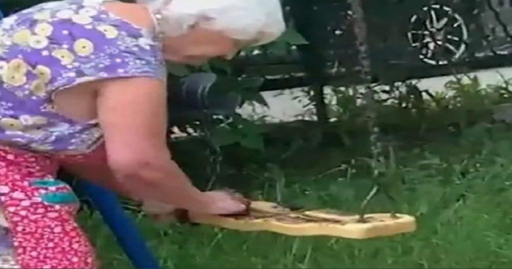 Malévola abuelita llena de excremento unos columpios para que los niños no jueguen (VIDEO)
