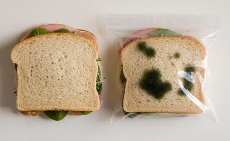 sandwich echado a perder