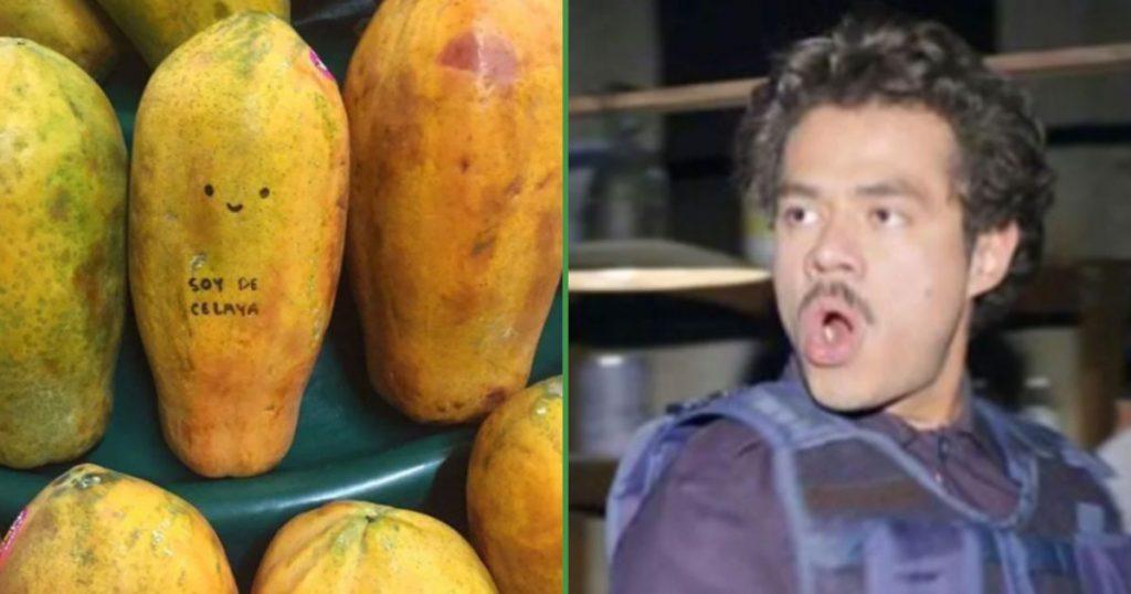 Secretaría de Economía impulsaría la exportación de la papaya de Celaya