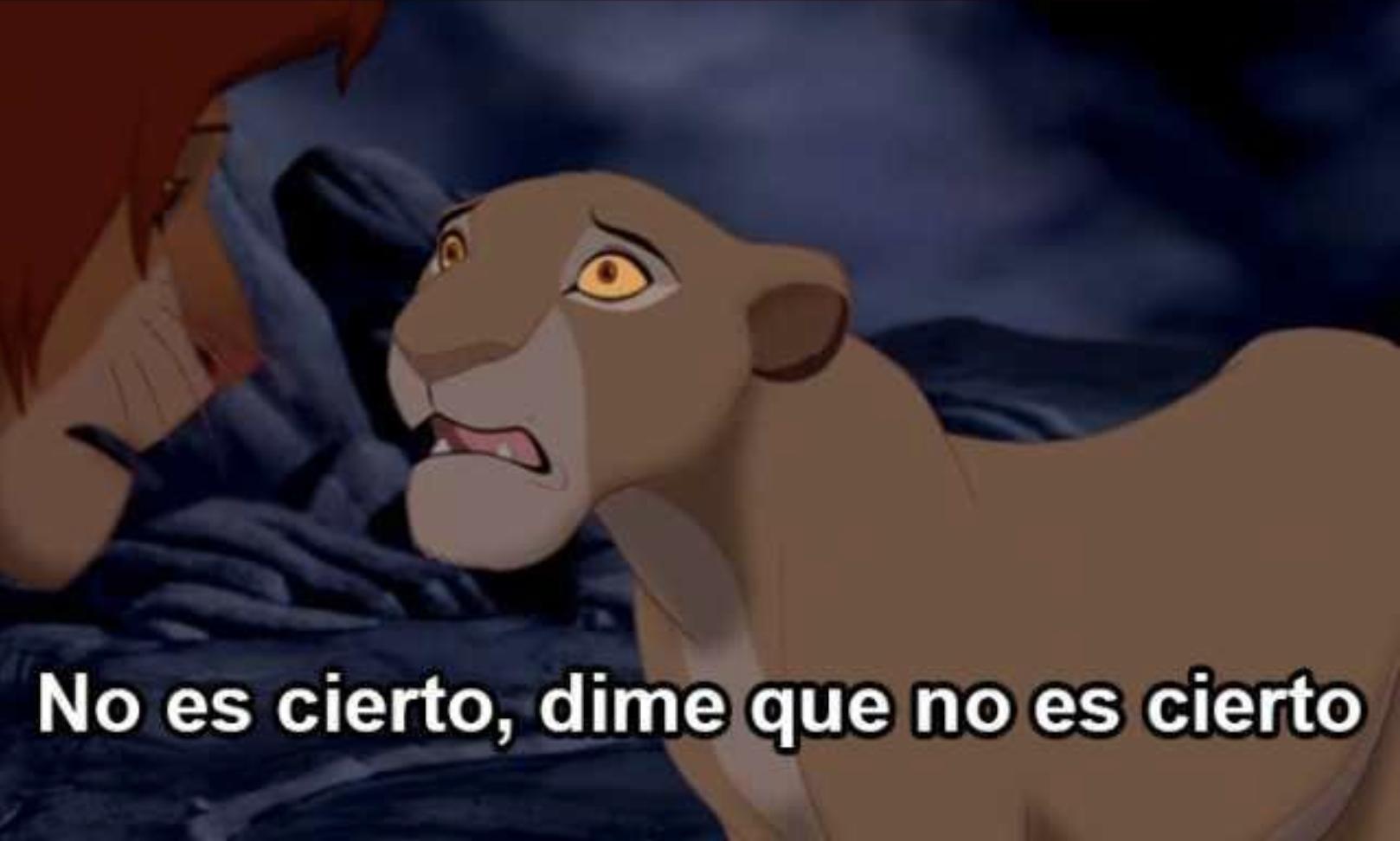 No es cierto dime que no es cierto rey leon meme