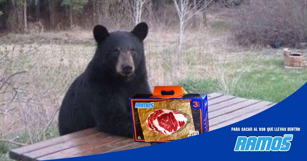 La Ramos ya busca al oso regio para que también les haga publicidad