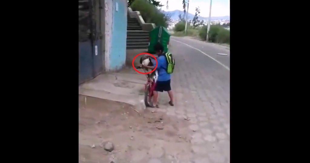 Mejores amigos: Niño pone cubrebocas a su perro antes de salir a jugar (VIDEO)
