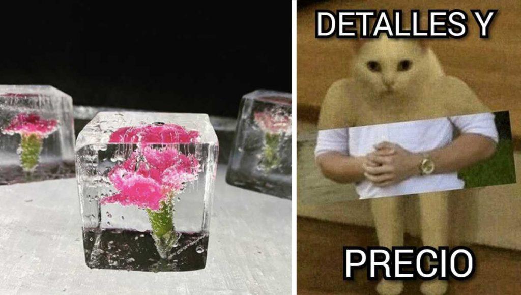 Ricos whitexicans venden hielo premium